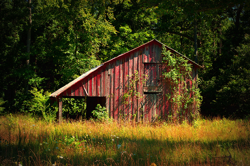 That Little Red Barn